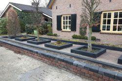 afbeelding tuin 2